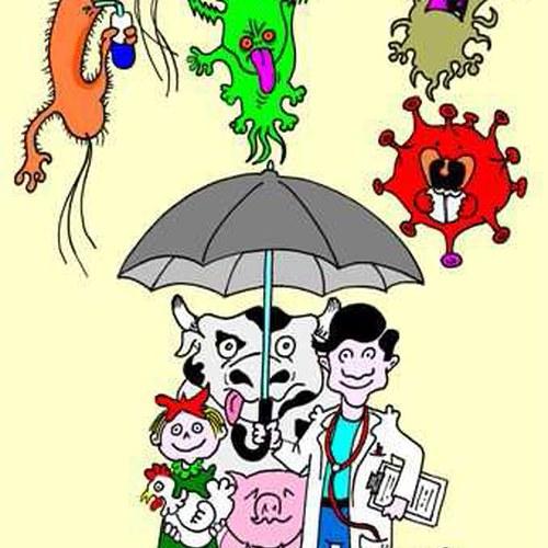 antibioticoresistenza