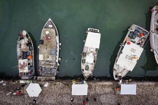 Navi da pesca all'opera a Cattolica per la raccolta dei rifiuti marini
